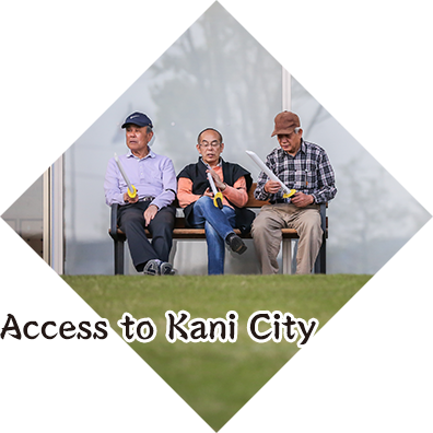 Access to Kani City